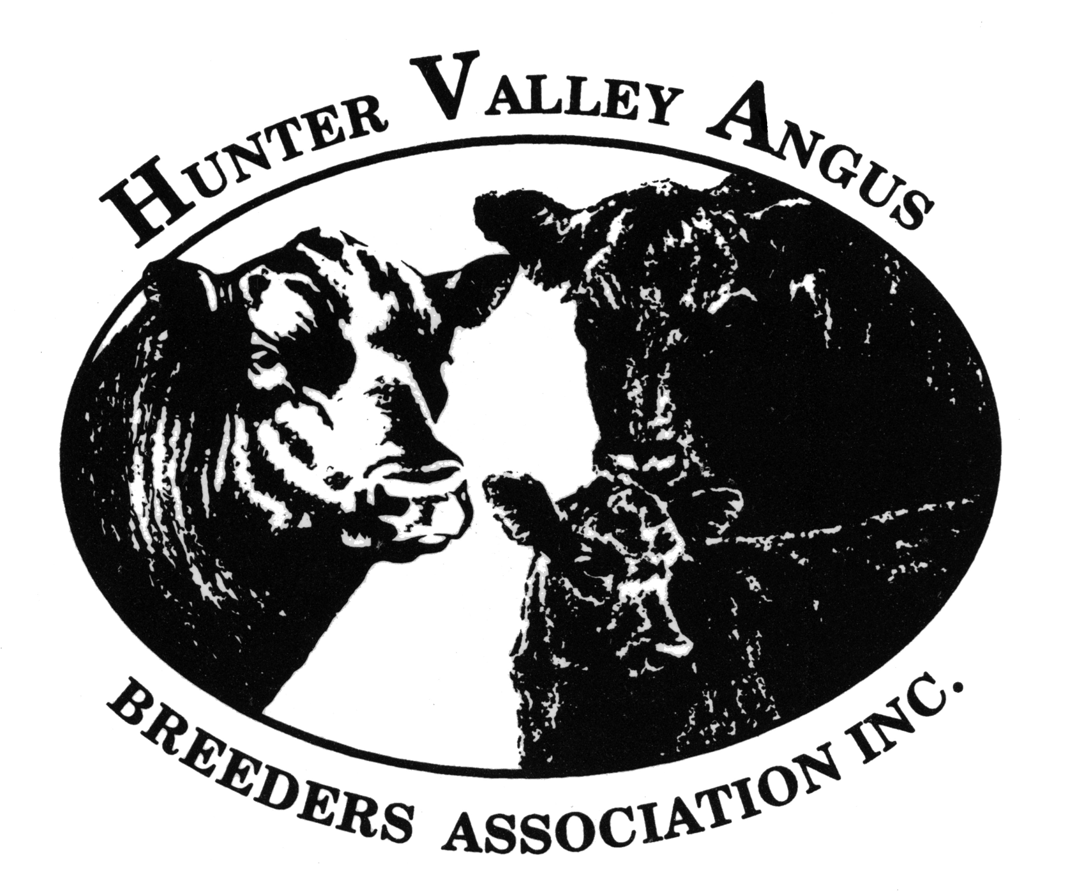 Hunter Valley Angus Breeders Female Sale